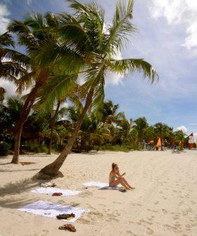 sun morning beach