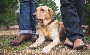 Boots + Stella