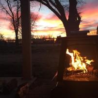 Backyard Bliss